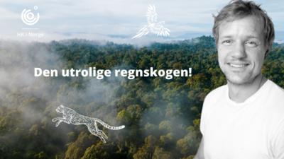 Handel og Kontor i Norge-Den utrolige regnskogen! @ Meetando.no